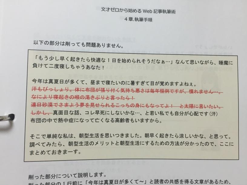 saizero_nakami_05